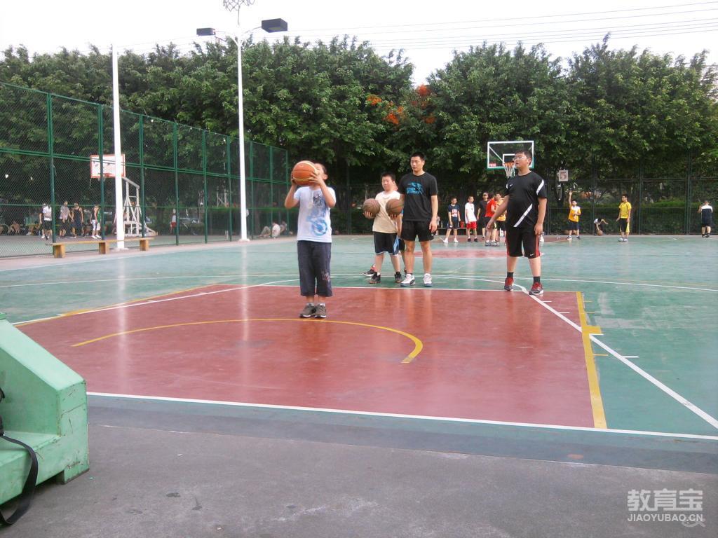 对篮球往返绕杆运球项目的技术分析与教学建议